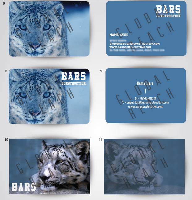 Bars Construction Business cards 2